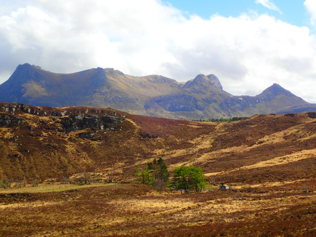 different perspective of Ben loyal